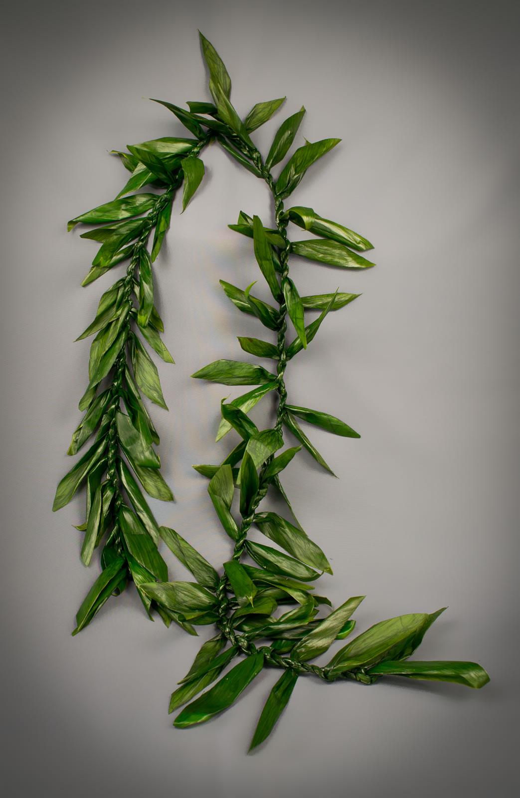 Maile ti leaf lei puna ohana tropical flowers leis home izmirmasajfo Images