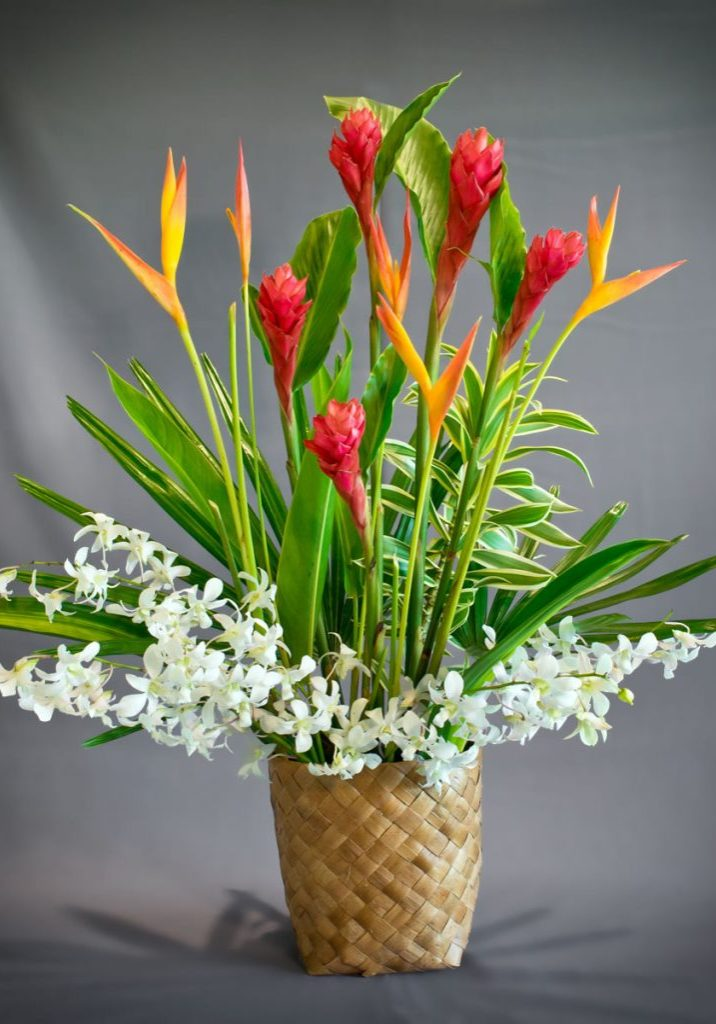 Tropical Flower On Koh Samui Thailand: Tropical Flowers, Arrangements & Leis