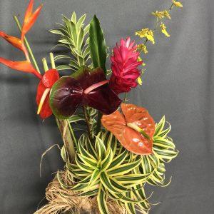 Pomai flower assortment